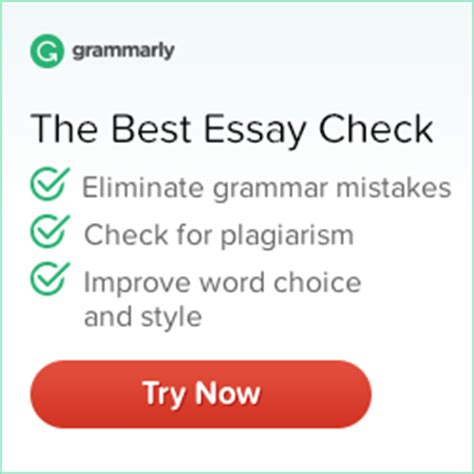 my hobby essay in english blogging in pakistan  essay my hobby essay in english